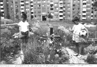 Foto di Tano D'Amico a Sarajevo durante l'assedio. Nelle altre altre foto, tutte ottime (BN)