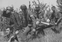 soldati della guardia nazionale croata portano in barella un loro commilitone ferito sulla linea del fuoco. (BN) foto agenzia