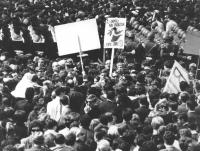 """""""folla di divorzisti durante una manifestazione di piazza. Cartello: """"""""gli animali non divorziano, i popoli civili SI"""""""" (BN)"""""""