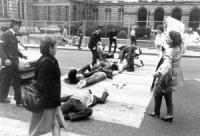 La polizia tenta di far alzare militanti radicali sdraiati sulla strada davanti al Parlamento belga per chiedere azioni legislative a favore della bat