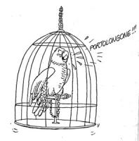 """VIGNETTA Un pappagallo in gabbia dice: """"portolongoneee!"""" si riferisce all'arresto di Enzo Tortora"""