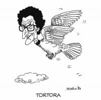 """VIGNETTA: """"Enzo Tortora, candidato radicale al Parlamento Europeo"""" Una tortora in volo con la faccia di Toni Negri. Scritta: """"Tortora"""""""