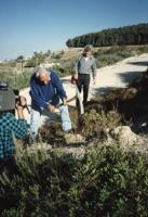 Pannella con il piccone scava una buca per piantare un albero della pace in Israele. Nelle altre (numerosissime  foto della cerimonia). [altre 326 e 3