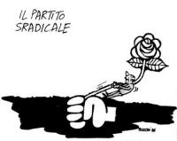 """VIGNETTA Titolo: """"Il partito sradicale"""". Un omino tenta di recidere il gambo della rosa nel pugno del logos radicale. Vignetta firmata Bucchi, apparsa"""
