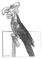 """VIGNETTA Un pappagallo (manifesta allusione al """"caso Tortora"""") con la testa di Marco Pannella. Vignetta di Forattini, per Satyricon, inserto del quoti"""