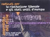 """Cartellino di ingresso all'""""Assemblea dei Mille"""", """"radicali per la rivoluzione liberale e gli stati uniti d'europa"""", all'hotel Ergife di Roma."""