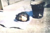 Cecenia: una testa decapitata.
