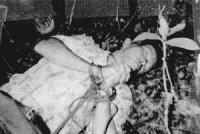 Il corpo di una vittima.