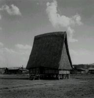 "Una ""Rong House"" dei Montagnard (vicino Kontum)."