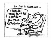 """VIGNETTA Didascalia: """"Dal che si deduce che..."""" Un signore in poltrona: """"I radicali: vanno bene per il divorzio, non per il matrimonio..."""". Vignetta p"""