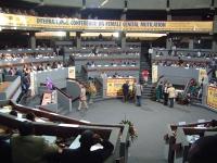 """""""International Conference on Genital Mutilation"""". Visione generale della sala dei congressi."""