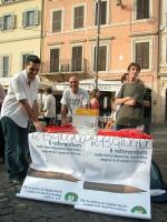 """Banchetto radicale per i quattro sì ai referendum, in occasione di una manifestazione a Campo dei Fiori, organizzata dal quotidiano """"Il Riformista""""."""